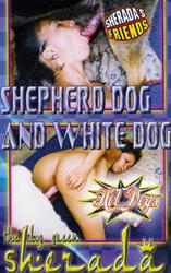 http://img128.imagevenue.com/loc255/th_867200683_tduid3219_ShepherdDogAndWhiteDog_123_255lo.jpg